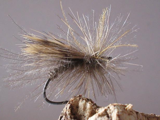 la mouche IPARLA «… une mouche rustique et VRAIE …»